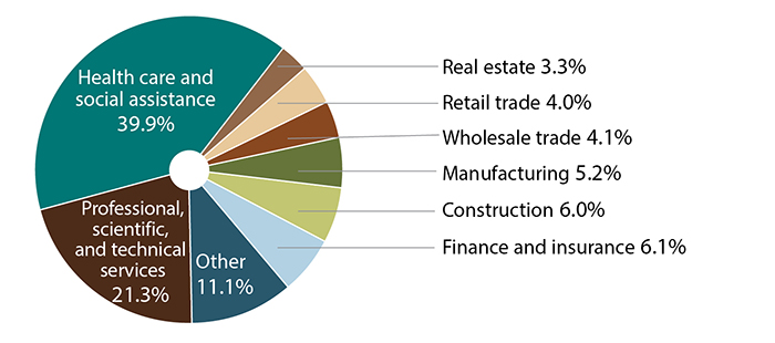 Cash balance plans by business type: health care and social assistance 39.9%; professional, scientific, and technical services 21.3%; other 11.1%; finance and insurance 6.1%; construction 6%; manufacturing 5.2%;  wholesale trade 4.1%; retail trade 4%; real estate 3.3%